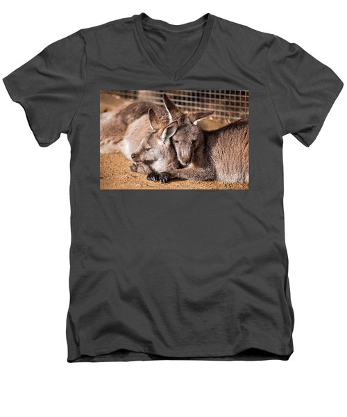 Cuddling Kangaroos Men's V-Neck T-Shirt by Ray Warren