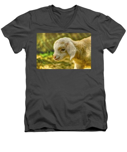 Cuddly Men's V-Neck T-Shirt