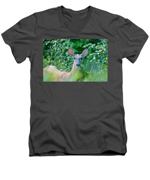 Curious Doe Men's V-Neck T-Shirt
