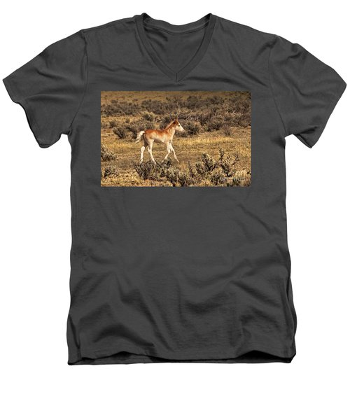 Cute Colt Wild Horse On Navajo Indian Reservation  Men's V-Neck T-Shirt