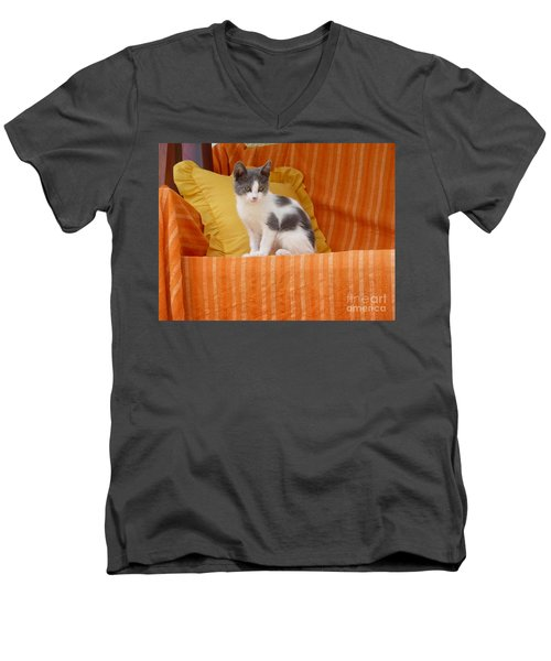 Men's V-Neck T-Shirt featuring the photograph Cute Kitty by Vicki Spindler
