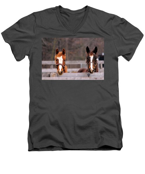 Cute Yearlings Men's V-Neck T-Shirt