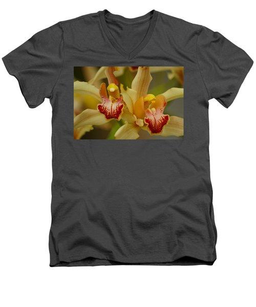 Cymbidium Twins Men's V-Neck T-Shirt