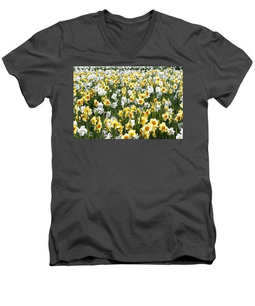 Daffodils Men's V-Neck T-Shirt by Lana Enderle