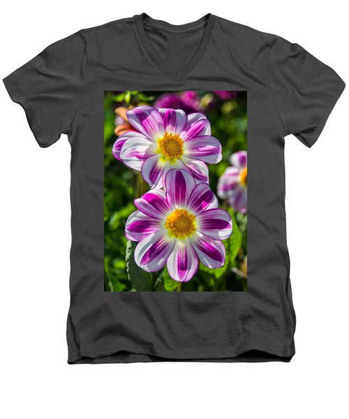 Dahlia 3 Men's V-Neck T-Shirt