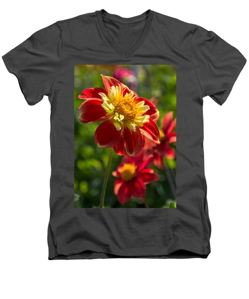 Dahlia 5 Men's V-Neck T-Shirt