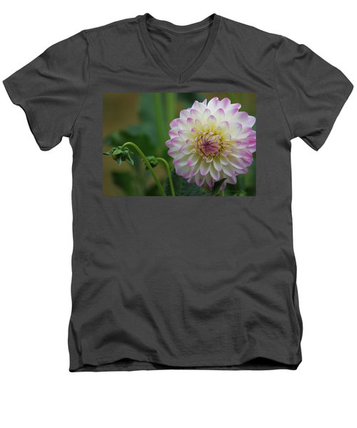Dahlia In The Mist Men's V-Neck T-Shirt by Jeanette C Landstrom