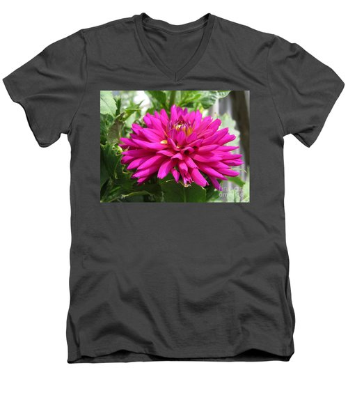 Men's V-Neck T-Shirt featuring the photograph Dahlia Named Andreas Dahl by J McCombie