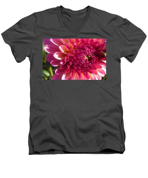 Men's V-Neck T-Shirt featuring the photograph Dahlia Pink 1 by Susan Garren