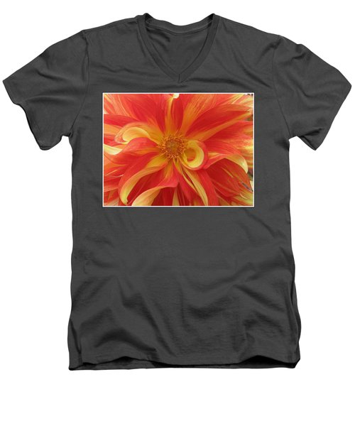 Dahlia Unfurling In Yellow And Red Men's V-Neck T-Shirt by Dora Sofia Caputo Photographic Art and Design