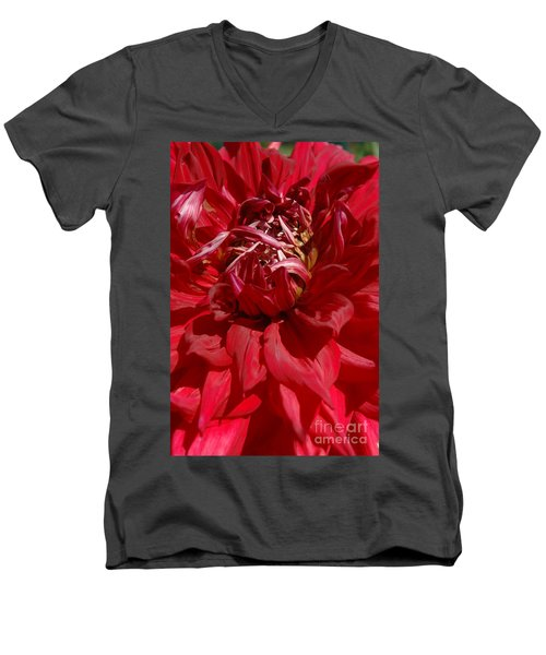Men's V-Neck T-Shirt featuring the photograph Dahlia Viiii by Christiane Hellner-OBrien