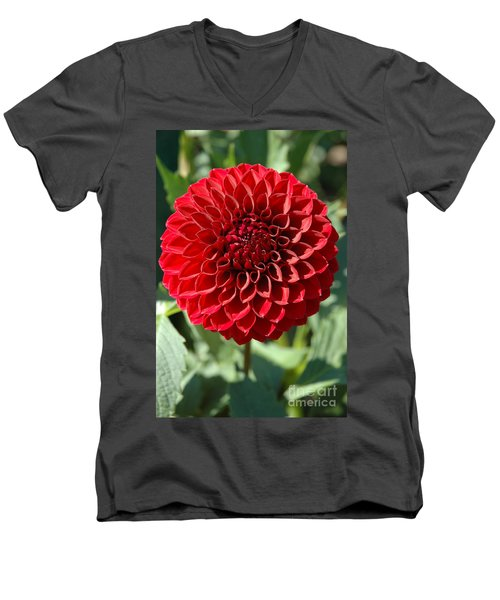 Men's V-Neck T-Shirt featuring the photograph Dahlia Xii by Christiane Hellner-OBrien