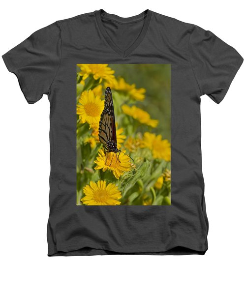 Men's V-Neck T-Shirt featuring the photograph Daisy Daisy Give Me Your Anther Do by Gary Holmes