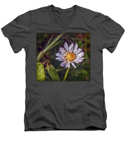 Men's V-Neck T-Shirt featuring the photograph Daisy by Hanny Heim