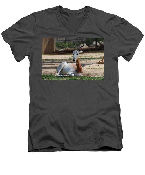 Dama Gazelle Men's V-Neck T-Shirt by DejaVu Designs