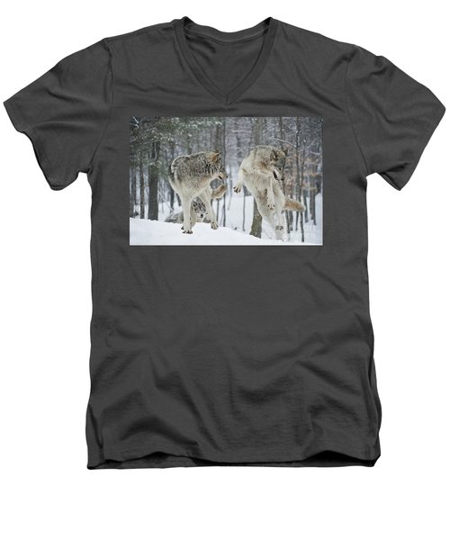 Men's V-Neck T-Shirt featuring the photograph Dances With Wolves by Wolves Only
