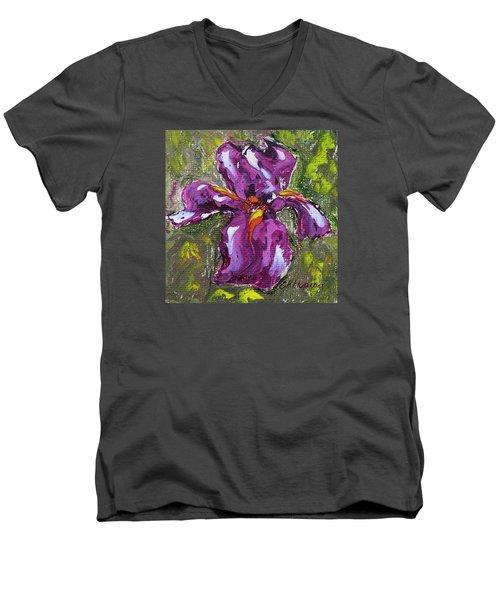 Dancing Iris Men's V-Neck T-Shirt