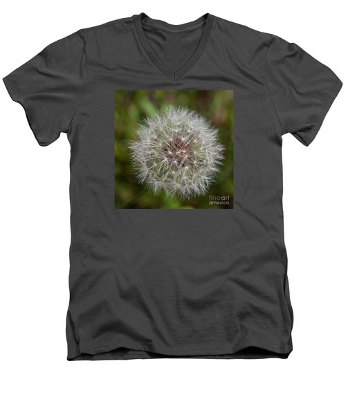 Dandelion Clock Men's V-Neck T-Shirt