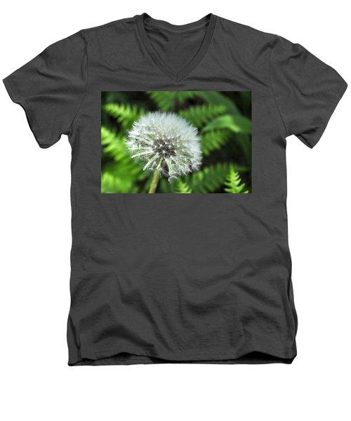Dandelion Men's V-Neck T-Shirt by Jim Brage