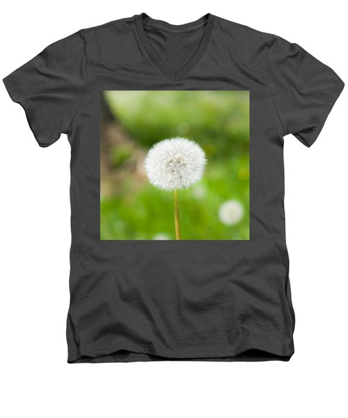 Dandelion Puffball Men's V-Neck T-Shirt