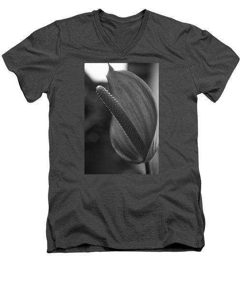 Dark And Light Men's V-Neck T-Shirt