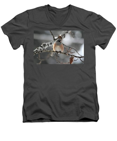 Men's V-Neck T-Shirt featuring the photograph Dark-eyed Junco by Shane Bechler