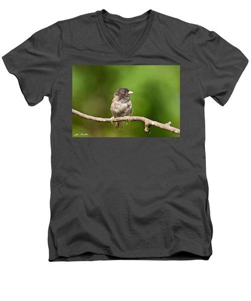 Dark Eyed Junco Men's V-Neck T-Shirt