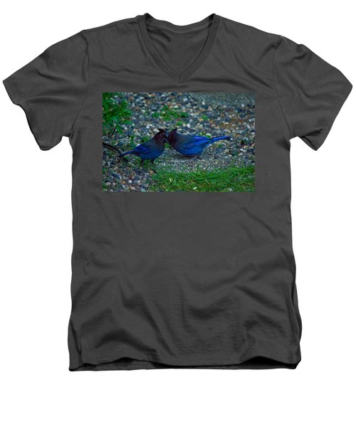 Darling I Have To Tell You A Secret-sweet Stellar Jay Couple Men's V-Neck T-Shirt by Eti Reid
