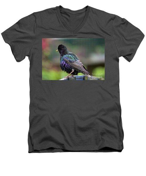 Darling Starling Men's V-Neck T-Shirt
