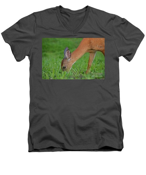 Deer 25 Men's V-Neck T-Shirt