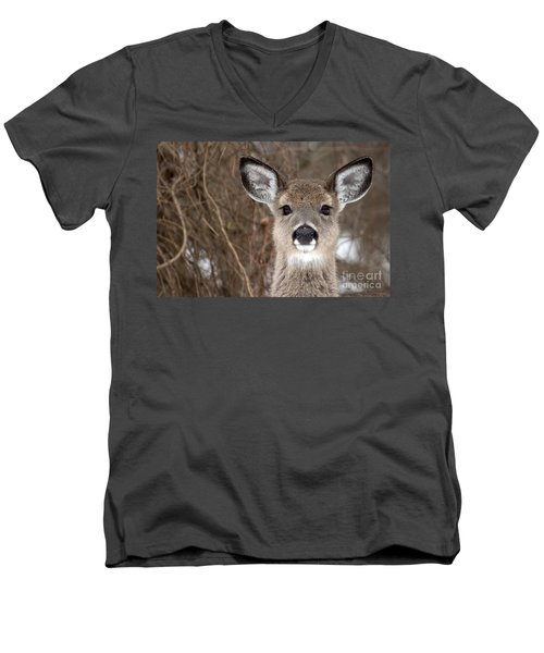Deer Men's V-Neck T-Shirt by Jeannette Hunt