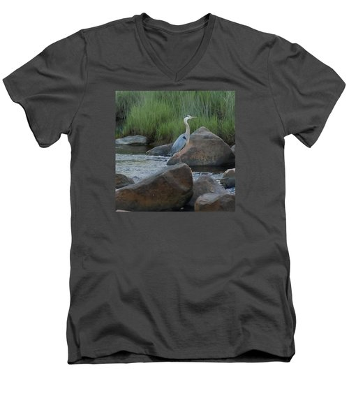 Men's V-Neck T-Shirt featuring the photograph Definitely Blue Heron by Francine Frank