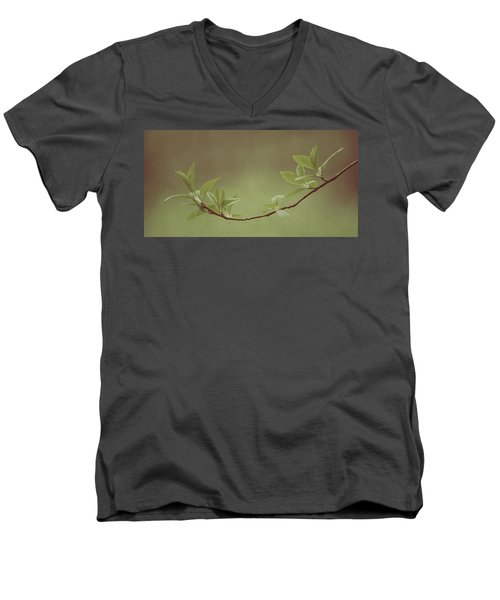 Delicate Leaves Men's V-Neck T-Shirt