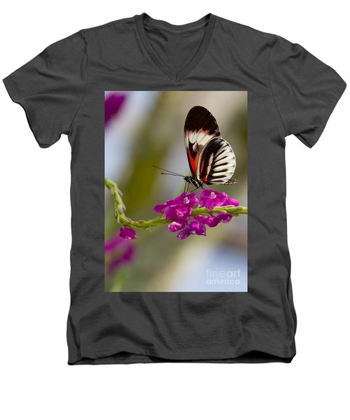 delicate Piano Key Butterfly Men's V-Neck T-Shirt