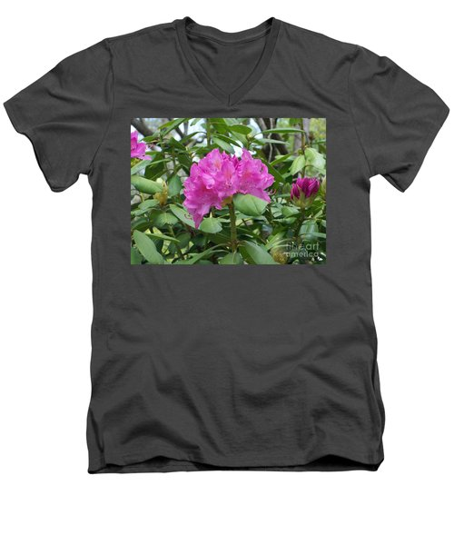 Men's V-Neck T-Shirt featuring the photograph Delicate Beauty by Roberta Byram