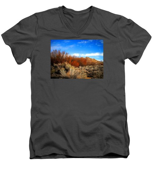 Men's V-Neck T-Shirt featuring the photograph Desert Colors by Marilyn Diaz