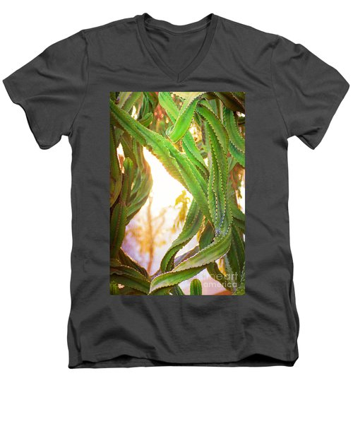 Desert Heat Men's V-Neck T-Shirt