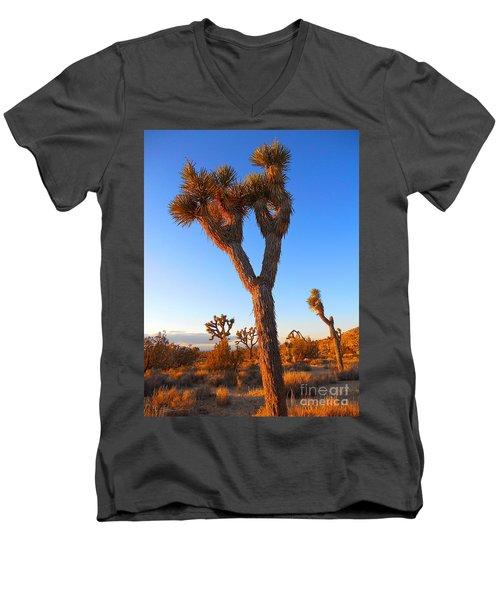 Desert Poet Men's V-Neck T-Shirt