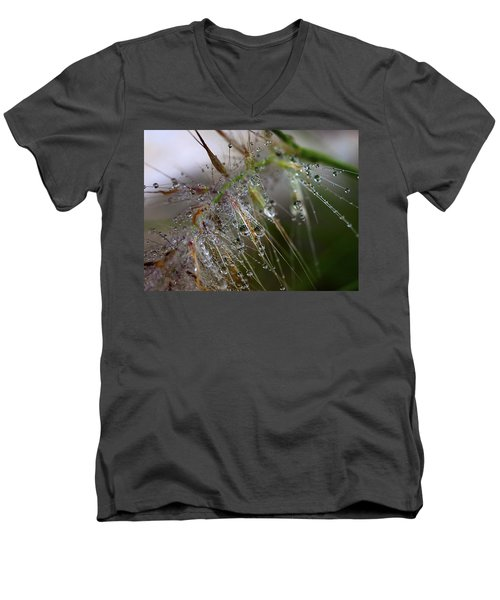 Men's V-Neck T-Shirt featuring the photograph Dew On Fountain Grass by Joe Schofield