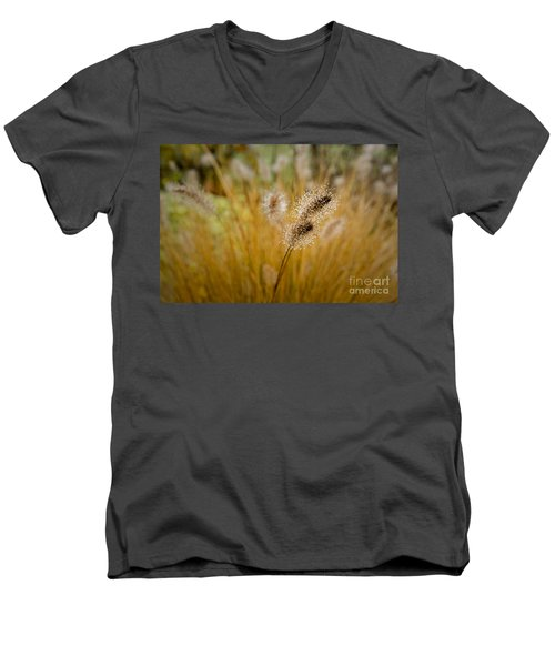 Dew On Ornamental Grass No. 4 Men's V-Neck T-Shirt