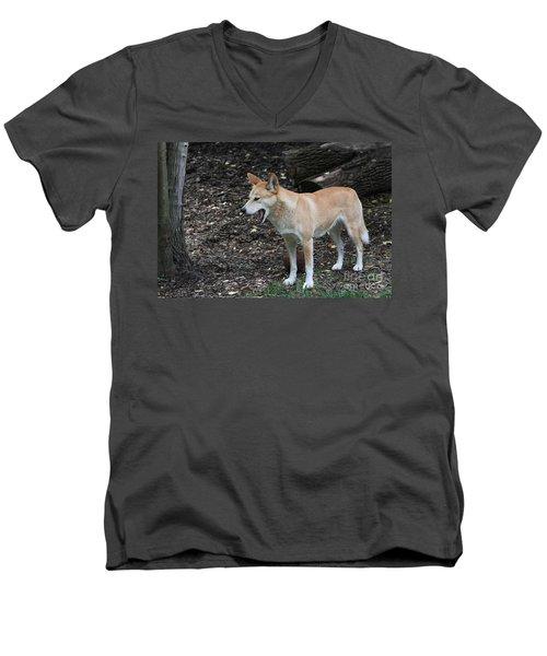 Dingo #2 Men's V-Neck T-Shirt