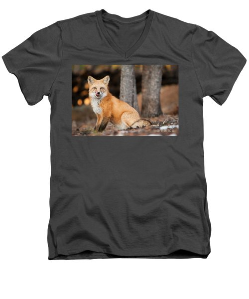 Men's V-Neck T-Shirt featuring the photograph Dinner Was Good by John Wadleigh