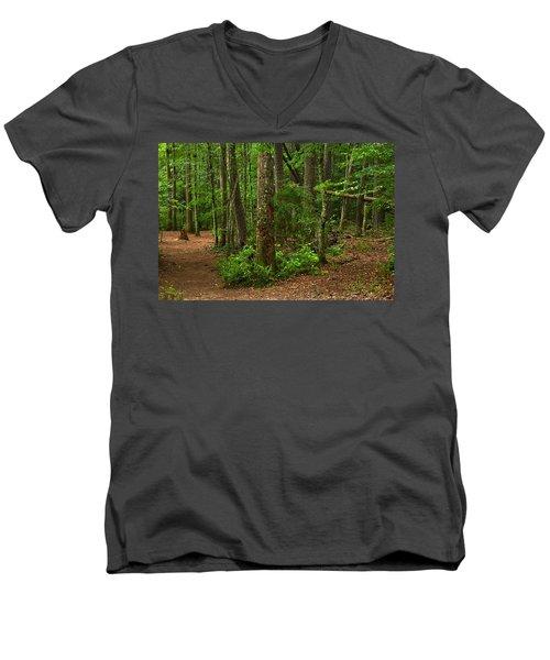 Diverted Paths Men's V-Neck T-Shirt