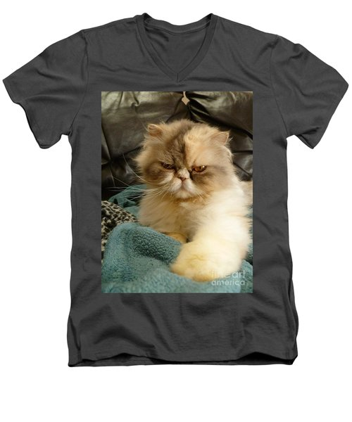 Men's V-Neck T-Shirt featuring the photograph Do I Look Amused? by Vicki Spindler