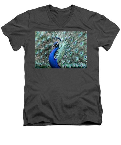 Do You Like Me Now Men's V-Neck T-Shirt
