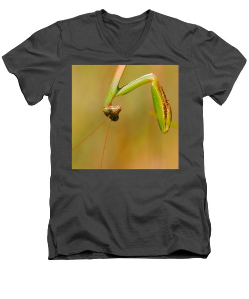 Do You Mind? Men's V-Neck T-Shirt by Amy Porter