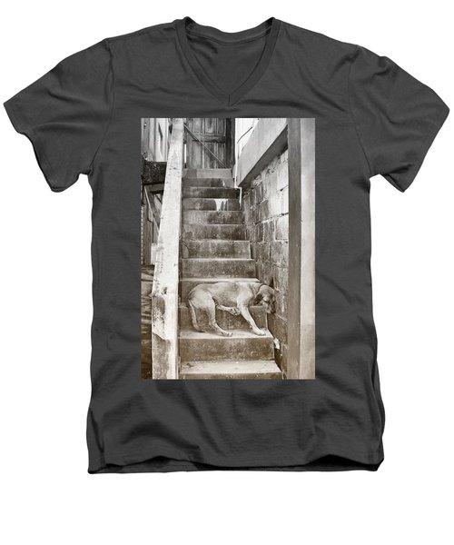 Dog Tired Men's V-Neck T-Shirt