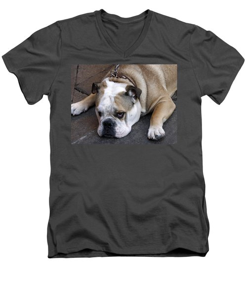 Dog. Tired. Men's V-Neck T-Shirt
