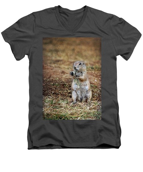 Doggie Snack Men's V-Neck T-Shirt