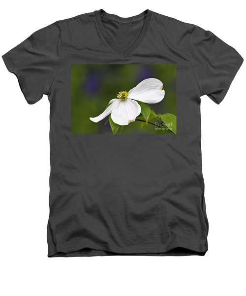 Dogwood Blossom - D001797 Men's V-Neck T-Shirt